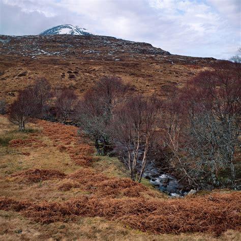Landscape Synonym Synonym For Peaked My Interest