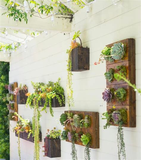 17 best ideas about succulent wall gardens on