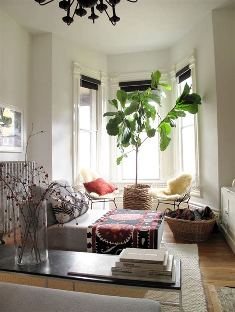Living Room With Tree Indoor Trees Feng Shui Plants Feng Shui Interior