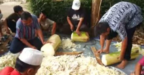 Fermentasi Pakan Ikan Hias cara membuat alternatif pakan ternak dengan fermentasi