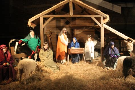 the davis dailies live nativity