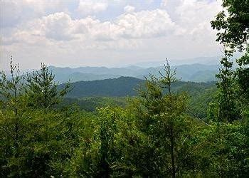 Pet Friendly Cabins Smokey Mountains by 5 Health Benefits Of Staying In A Pet Friendly Cabin In