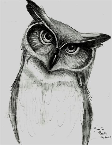 imagenes a lapiz para dibujar de animales maravillosos animales para dibujar a lapiz faciles dibujos