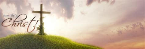new life baptist church dallas