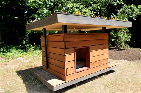 dog house roof materials eco chic pet houses offer creature comforts green roof dog cat bird houses