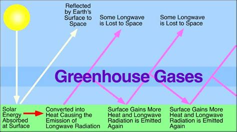 Green House Gasses by Global Warming Effects On Earth