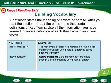 cell structure  function