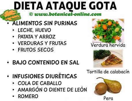 dieta  bajar el acido urico dietas de nutricion  alimentos