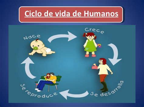 imageens del cilco de vida dels er humano para colorear ciclos de vida