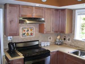 Kitchen Murals Backsplash backsplash photos kitchen backsplash pictures ideas tile murals