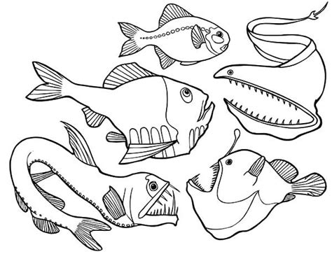 7 Best Images About Deep Sea Fish Outlines On Pinterest Angler Fish Coloring Page