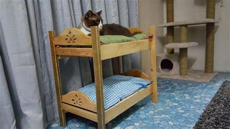 Cat Bunk Beds by 12 Diy Creative Wood Pallet Ideas 99 Pallets