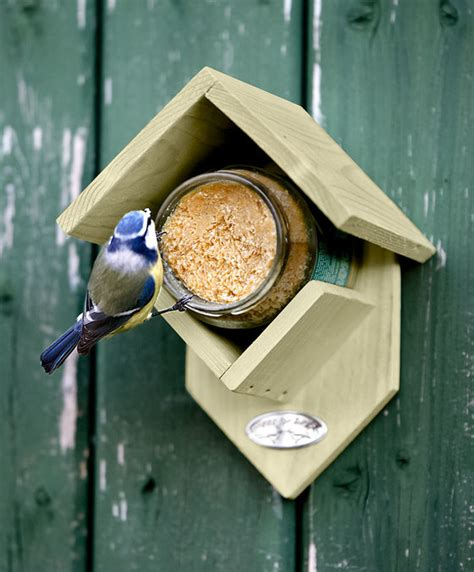 buy 174 best for birds feeder peanut butter bakker com