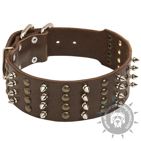 spiked collars for pitbulls purchase stylish leather pitbull collar spiked studded collars