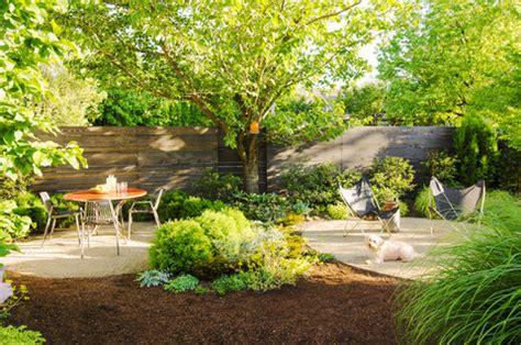 backyard ideas  dogs sunset magazine