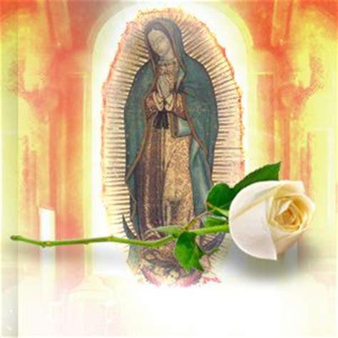 larosa de guadalupe la rosa de guadalupe lunes miercoles y viernes 5 15pm www