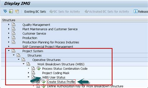 Project Controls Resume Examples by Sap Ps Status Profile