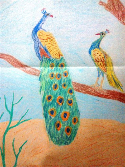 National Bird Of India Outline by Peacock India S National Bird By Moumita28 On Deviantart