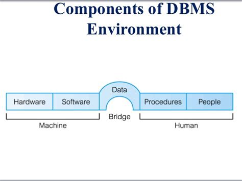 design guidelines in dbms database systems chapter 1