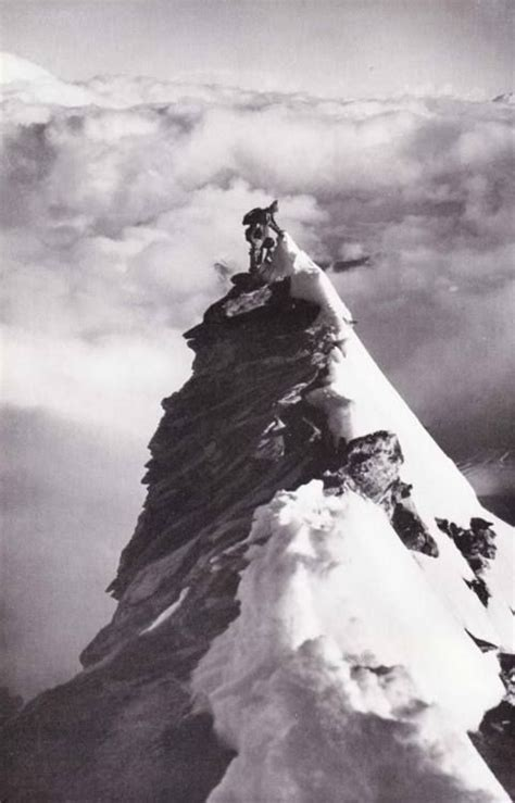 hundreds of mountaineers climb the alps for epic 393 best random images on pinterest drawings of
