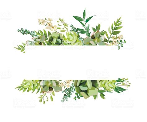 vector floral design horizontal card design soft succulent