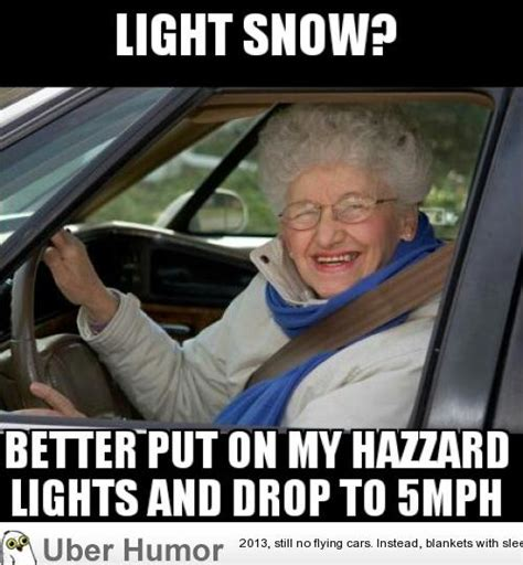 Funniest Memes Pictures - every damn time it snows this woman finds me funny