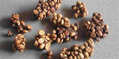 Kopi Coffee Bean kopi luwak indonesia coffee bean pouted magazine design trends creative