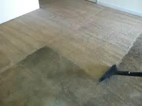 Wool Loop Rug Professional Carpet Cleaning Peaches N Cleanpeaches N Clean