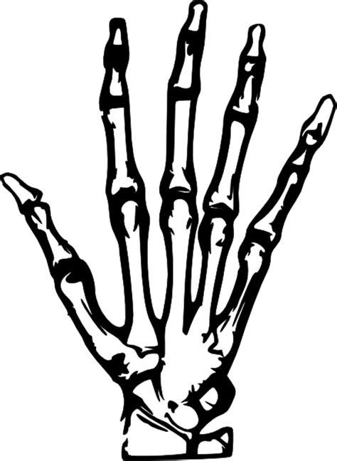 hand x ray clip art at clker com vector clip art online