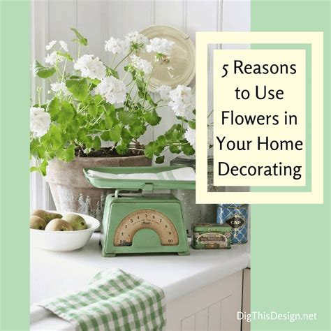 why decorate your home apartment therapy at home with