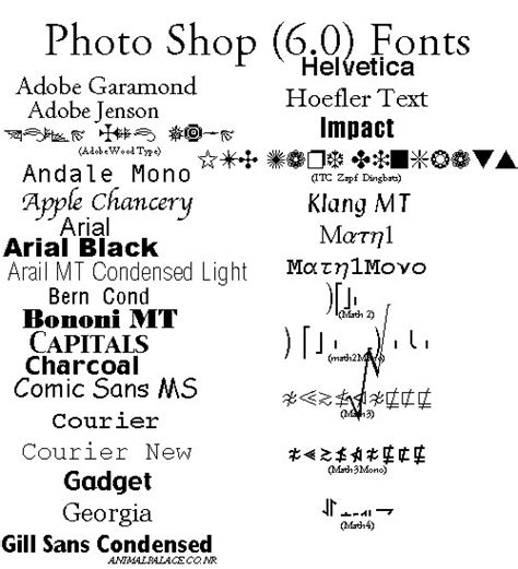 Wedding Fonts For Photoshop by Photo Store Photoshop Text