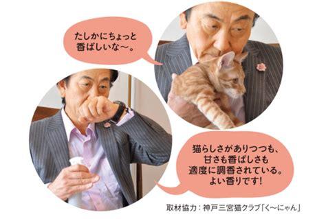 Parfum Untuk Kucing jepang bikin parfum aroma jidat kucing sukajepang