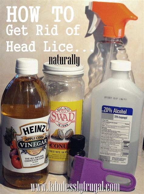 how do you get lice hairstyle 2013