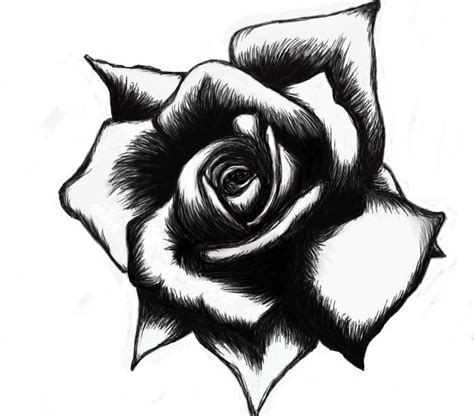 rose tattoo designs black and white black and white designs high quality designs