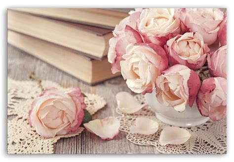roses books leinwand rosa romantik als dekoration f 252 r die