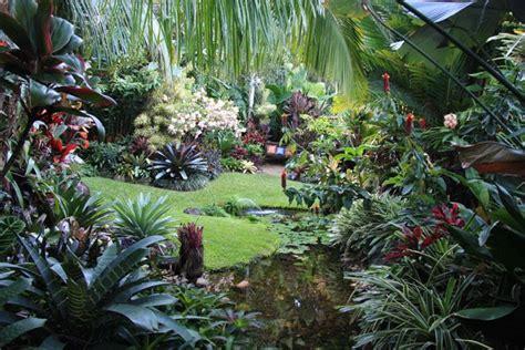 Dannis Sarimbit D Sun Flower tropical garden by dennis hundscheidt stunning garden on
