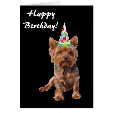 happy birthday yorkie images happy birthday yorkie breeds picture