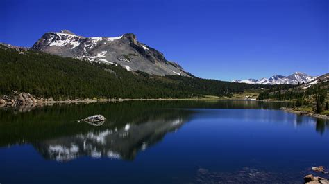 the national nature full hd wallpaper national geographic wallpaper