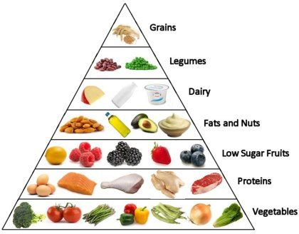 carbohydrates usage 187 low carbohydrates diet