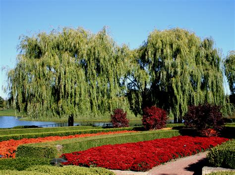 Chicago Botanic Garden Parking Chicago Botanic Garden Parking Home Of Home Design
