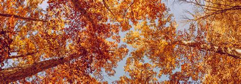 in fall grand junction fall and halloween events 2016