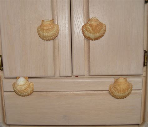 Seashell Drawer Knobs by Custom Sea Shell Drawer Pulls Knobs By Landidesigns On Etsy
