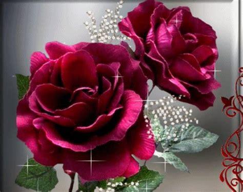 imagenes de rosas mas hermosas del mundo poemas para las mujer rosas mujer