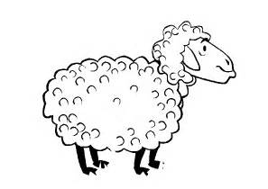 sheep coloring page sheep coloring pages coloringpages1001