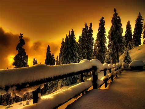lights and snow evening light and snow wallpaper what s wrong with