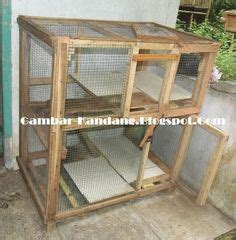 Kandang Kucing Well Cage cara membuat kandang kucing sederhana beserta contoh
