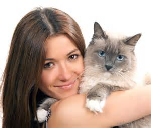 what are the best tips for pet owners with pictures