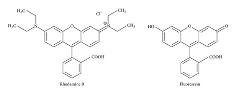 Rhodamin B chemical structures of rhodamine b and fluorescein