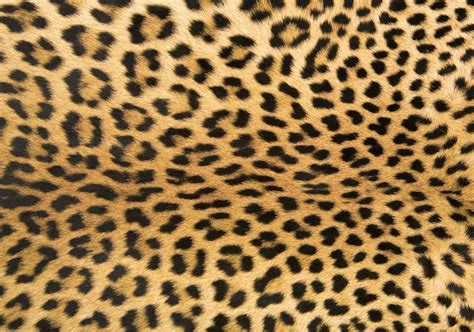 animal print accent rugs foflor animal print area rugs unique doormats leopard rug