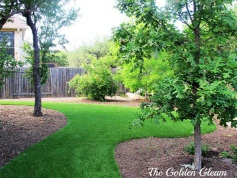 backyard conservation trees water conservation and we on pinterest